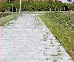 Fjerne mose på asfalt
